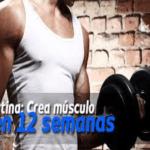 Crea un musculo en solo 12 semanas con esta rutina