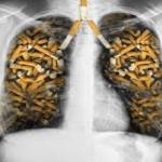 Daños del cigarrillo en los pulmones de un fumador
