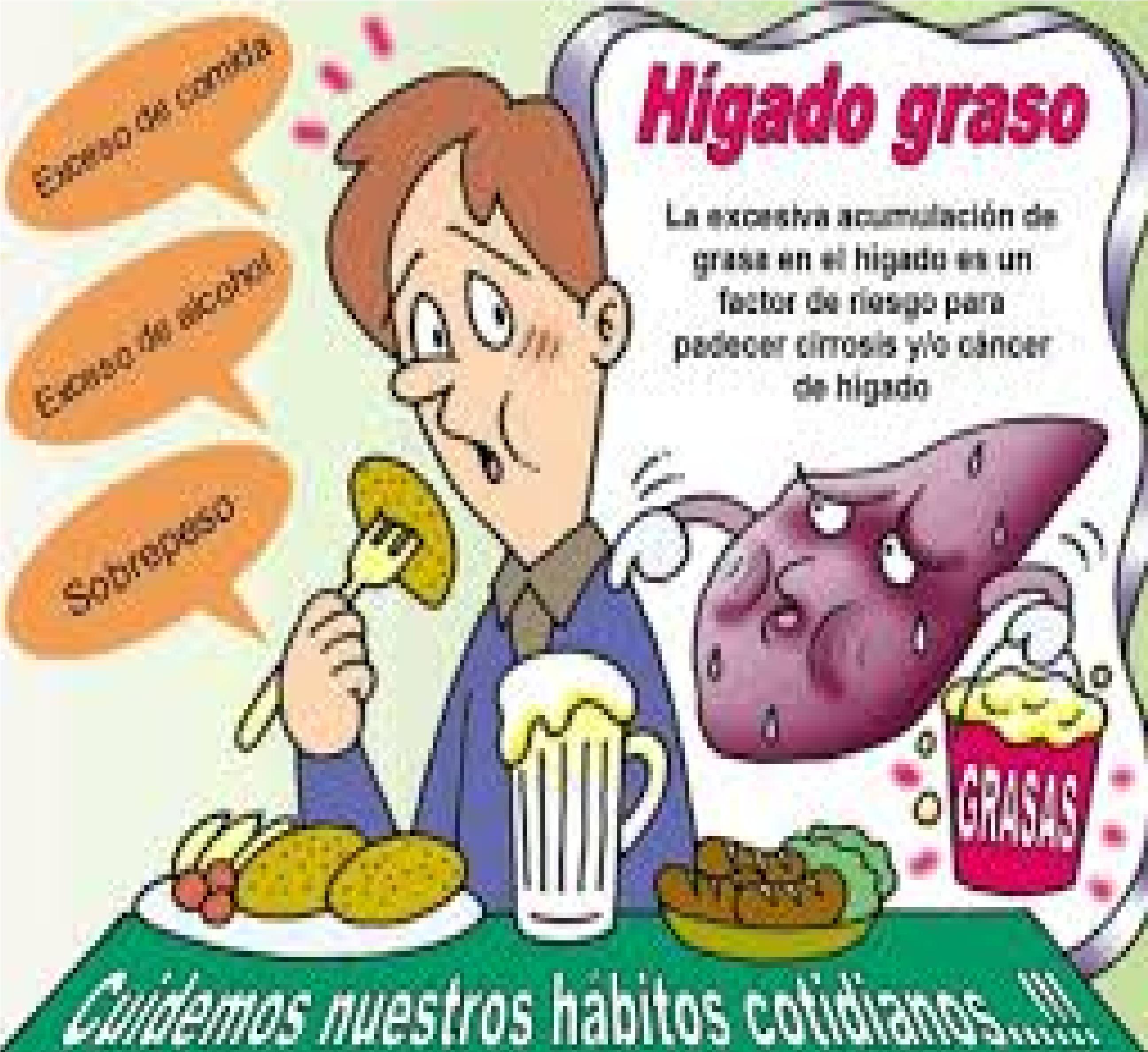 Tips para el h gado graso hombre alfa - Mejores alimentos para el higado ...