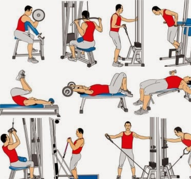Una rutina fitness ideal para hombres excelente alternando for Gimnasio musculacion