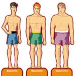 Diferentes contexturas de cuerpo de tipo somático