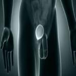 Como hacer la autoexploracion de los testiculos