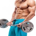 Como planificar tu entrenamiento en el gimnasio…