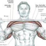 Tips para hacer press de hombre y reforzar la musculatura interna…